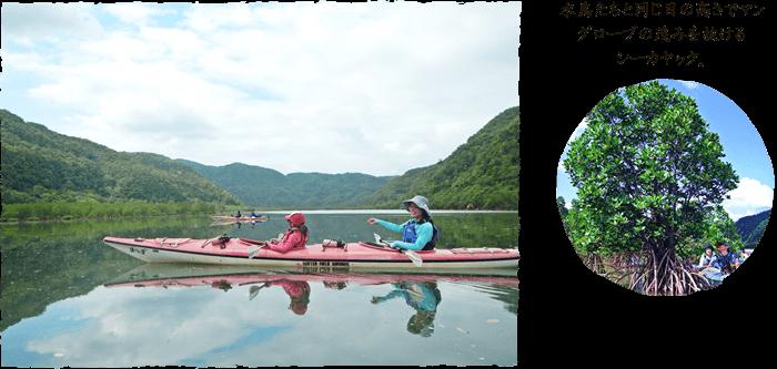 ジャングルカヌー滝あそび